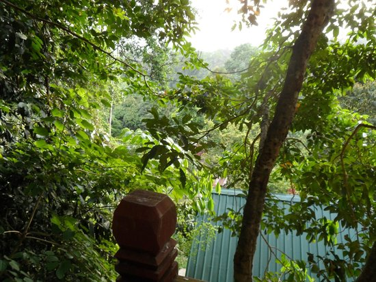 Holiday View Inn Taman Negara : vue de la chambre