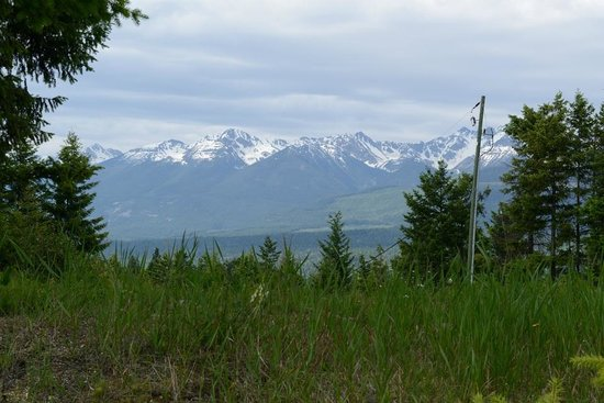 Le Beausoleil Bed and Breakfast: Views