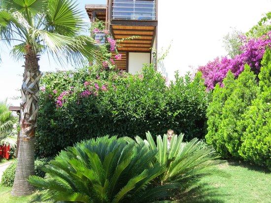 Delta Beach Resort: gardens