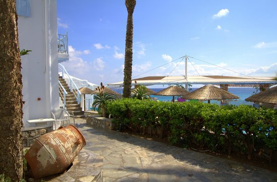 Mykonos Palace Beach Hotel : Pool Side View
