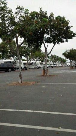 Mission Bay RV Resort : early morning quiet