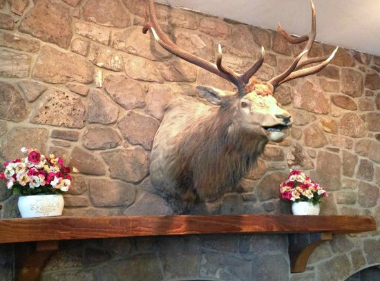 BEST WESTERN Radford Inn : Front lobby