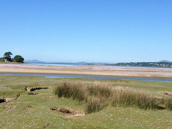Estuary Cottage Bed and Breakfast: estuary next to Portmeirion