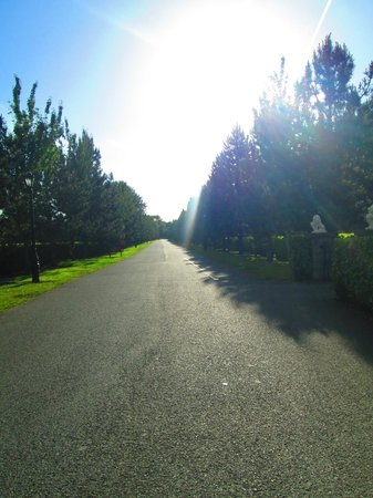 Finnstown Castle Hotel: the road into the hotel