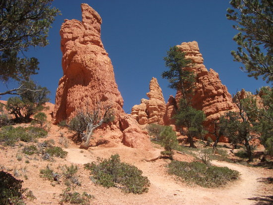Dixie National Forest: Red Canyon Hoodoo columns