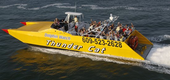 Wildwood Crest, NJ : Take a ride on the Tcat!!