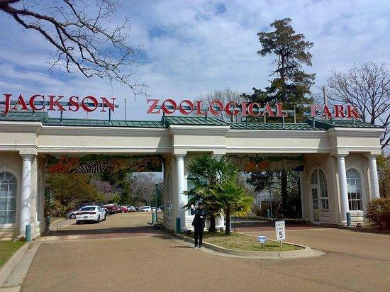 Jackson, MS: Zoo - na powitanie