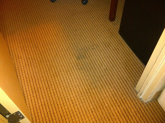 Comfort Suites O'Hare: Stained Carpet