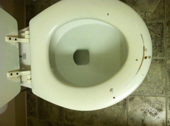 Rodeway Inn: Our toilet seat