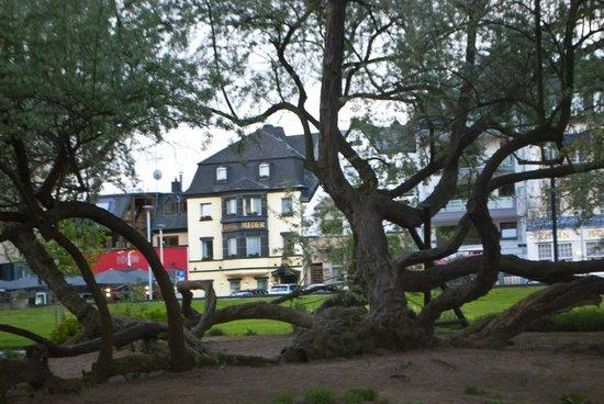 Hotel Meder: die Residenz am Rhein: View of Hotel Meder from park on Rhein