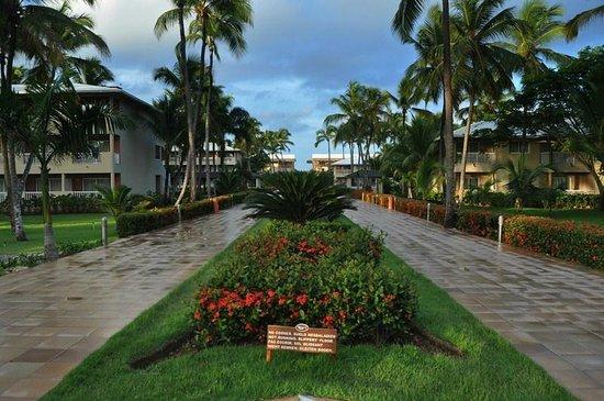 Sirenis Punta Cana Resort Casino & Aquagames: bit wet from the tropical storm but still beautiful