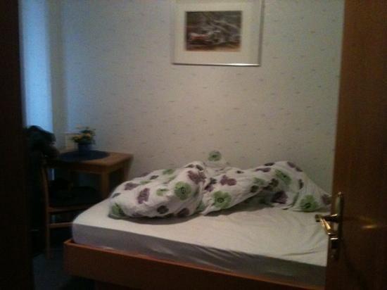 Hotel zur Burg Photo