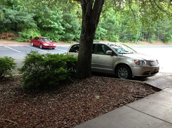 Lafayette Garden Inn & Conference Center : convenient parking