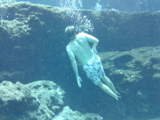 Ginnie Springs : A snorkeler checking out the cavern entrance