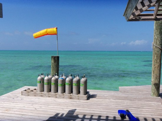 Small Hope Bay Lodge : What a day to dive!