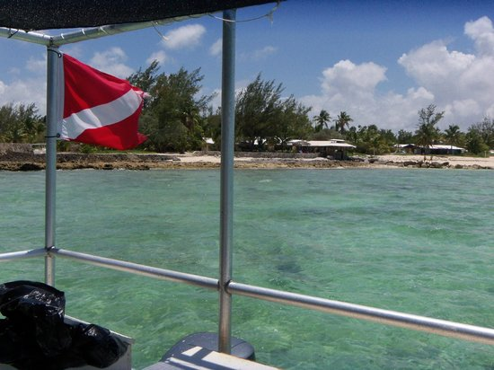 Small Hope Bay Lodge : From the boat - bar and patio