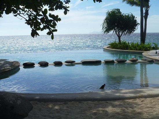 Treasure Island Resort: treasure island