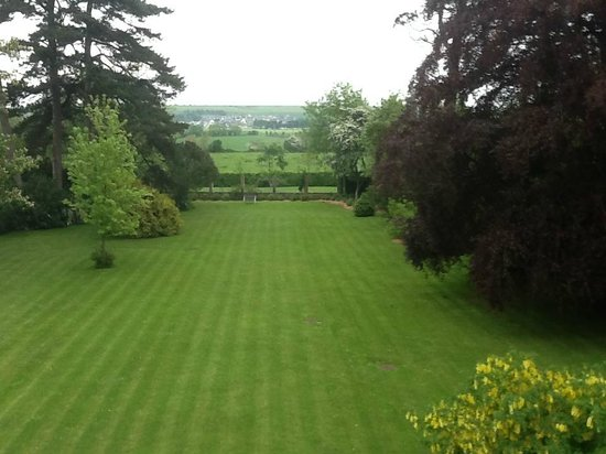 Chateau La Cheneviere : A beautiful view from one of our windows