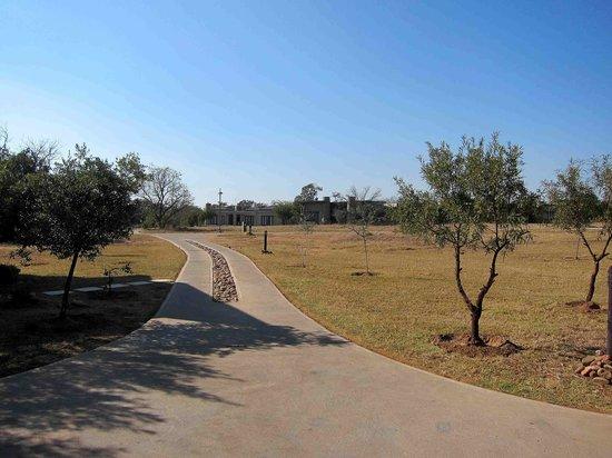Legend Golf and Safari Resort: Driveway to the room.