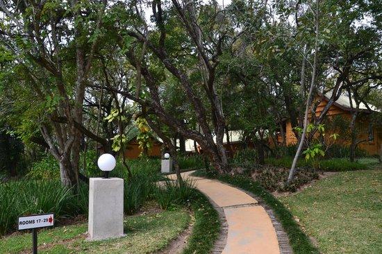 Gecko Lodge: Landscaping