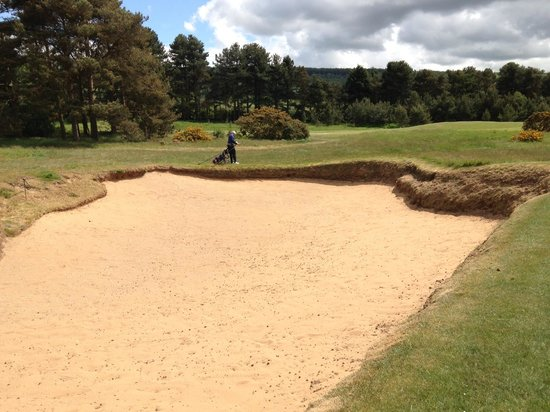 Ganton Golf Club: One of many huge bunkers you do not want to get into (of course)