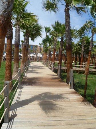 Vidamar Resort Algarve : Boardwalk to Beach