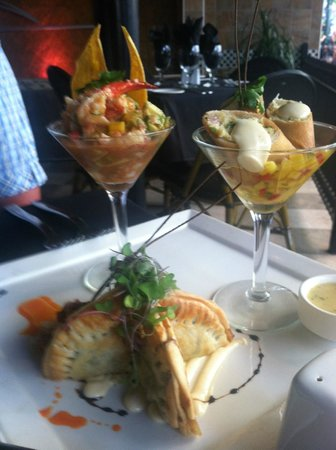 Selva Grill: Lobster ceviche, crab spring rolls and spinach empanadas ...