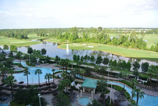 pool view from room 11th floor picture of hilton. Black Bedroom Furniture Sets. Home Design Ideas