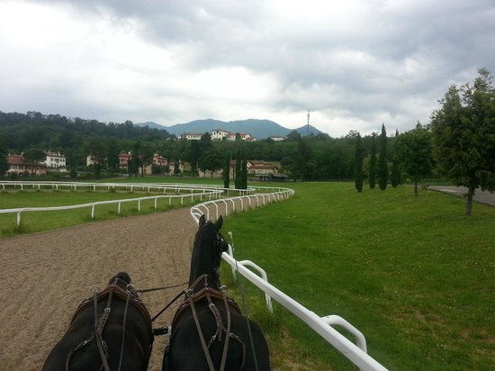 Le Foresterie dei Piaceri Campestri: Driving horses