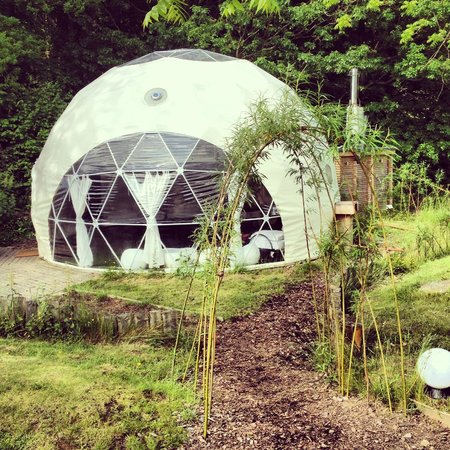 Dome Garden: The Super Dome