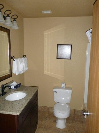 Econo Lodge : Bathroom with updated features
