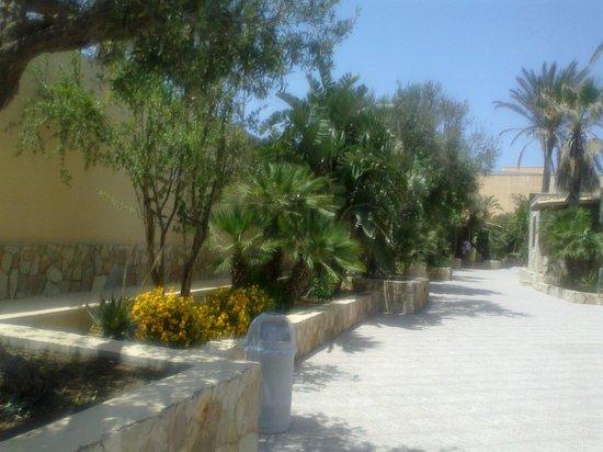 Oasis Resort : cortile