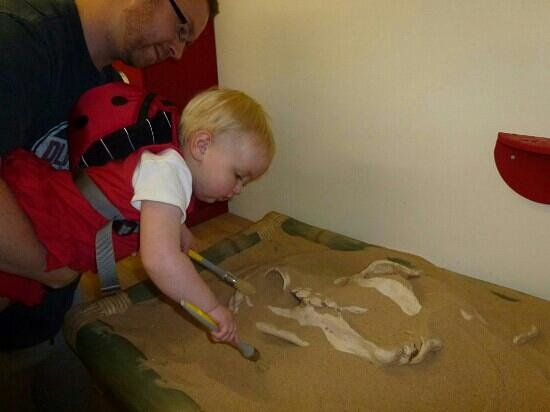 Dinosaur And Raptor Experience: Maisie the Archaeologist!