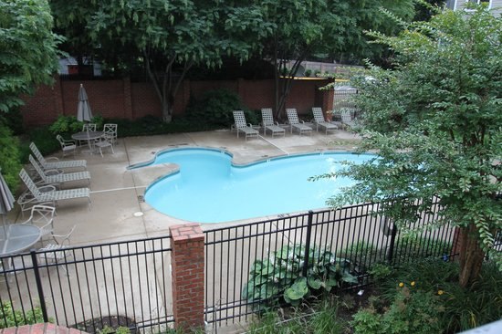 Homewood Suites Alexandria: Duck shape pool