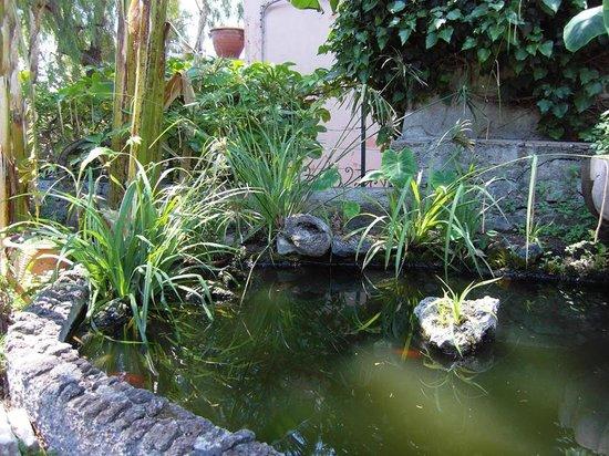 Hotel Villa Schuler: Teich der Villa Schuler