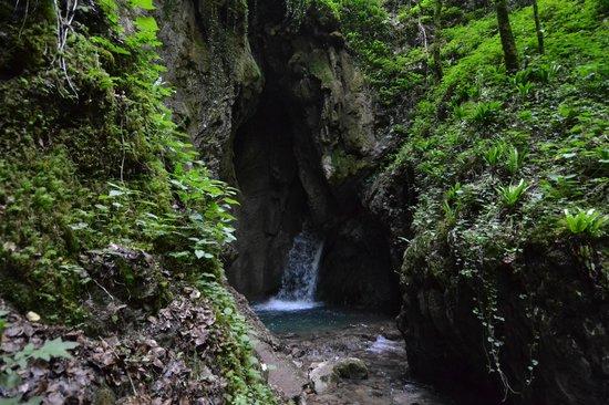 Albergo Mezzolago : Cascata Gorg d'Abiss (nelle vicinanze)