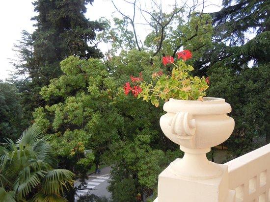 Hotel Villa Eugenia: Вид с балкона