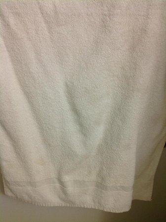 Extended Stay America - Chicago - Lombard - Oakbrook: Stained towel (I think you can barely see them in the pic)