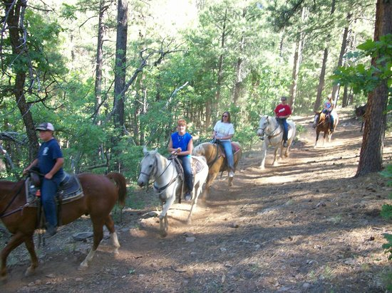 High Mountain Trail Rides : June 18, 2013