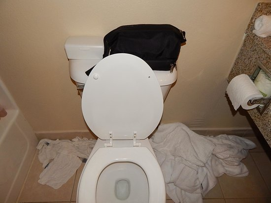 Comfort Suites : Toilet seat broken and missing pieces