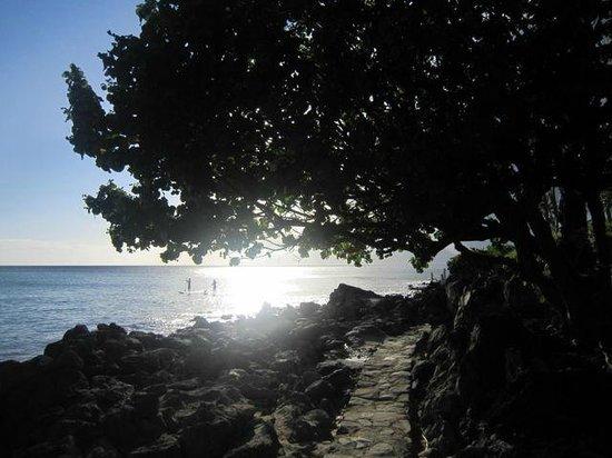 Napili Kai Beach Resort: Beach path