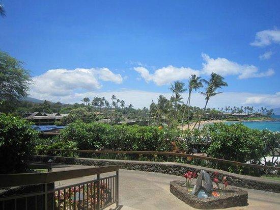 Napili Kai Beach Resort: Napili Kai grounds