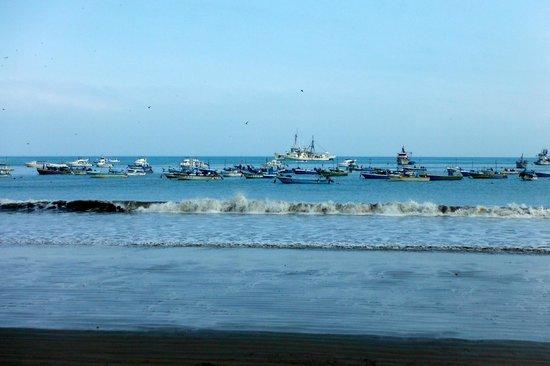 Hotel Hosteria Nantu: Puerto Lopez boats
