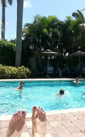Fort Lauderdale Airport / Cruise Port Inn : Hotel pool