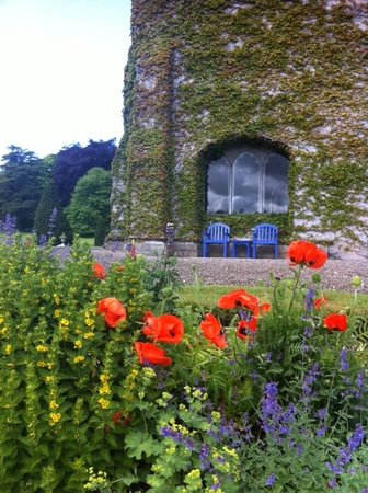 أداري مانور: Flowers Around Adare Manor
