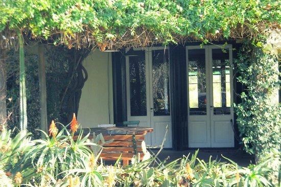 La Casa de los Limoneros : Más verde