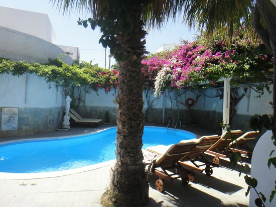 Alesahne Beach Hotel: a small pool