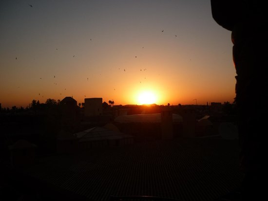 Riad Ilayka: sunset from the gazebo with birds flying overhead