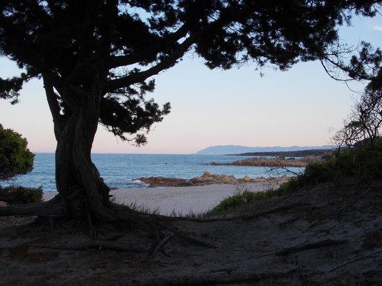Hotel & Residence Cala Liberotto: la spiaggia di cala Liberotto