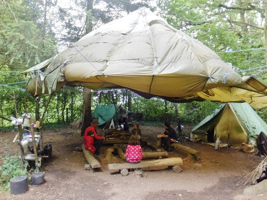 Feather Down Farm at Billingsmoor Farm: Wild Wanderers camp in the woods at the bottom of the farm